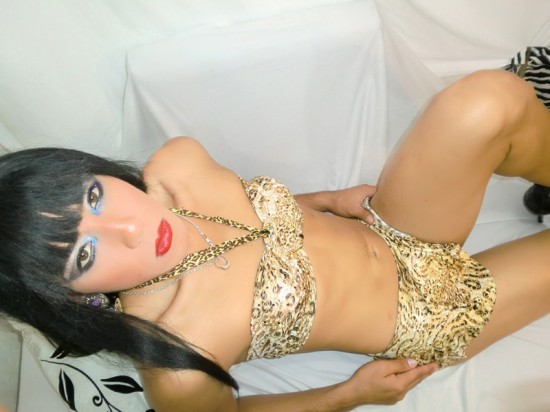 transexuales webcam
